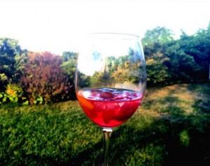 harat-net-noi-istanbul-backyard-wine